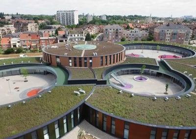 ROCKPANEL Anderlecht B0142 07opt